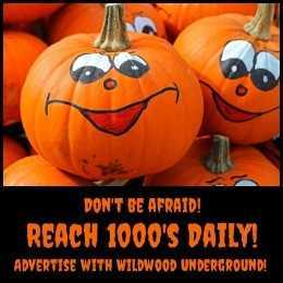Advertise with Wildwood Underground
