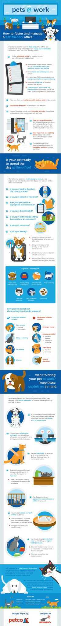 how-to-foster-manage-pet-friendly-office-page-content